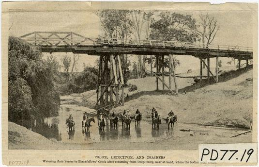 Police Detectives and trackers, Blackfellow Creek, Gatton c1899 DID 21878